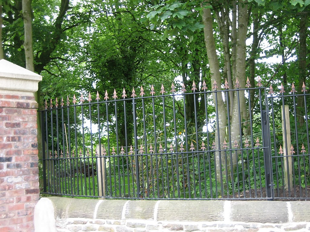 Fencing-IMG-0132